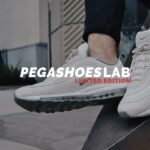 snazzy client Pegashoeslab